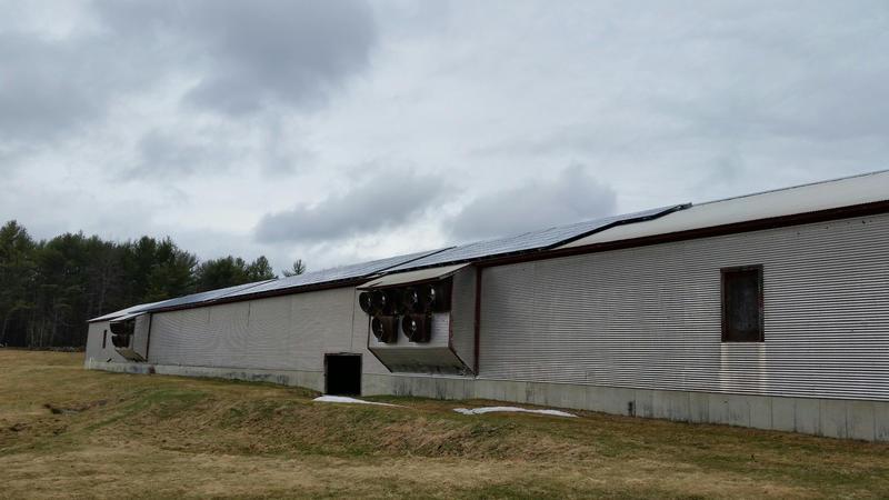 The solar array,  known as Sunnycroft Community Solar, at Russ and Judy Florenz's farm.