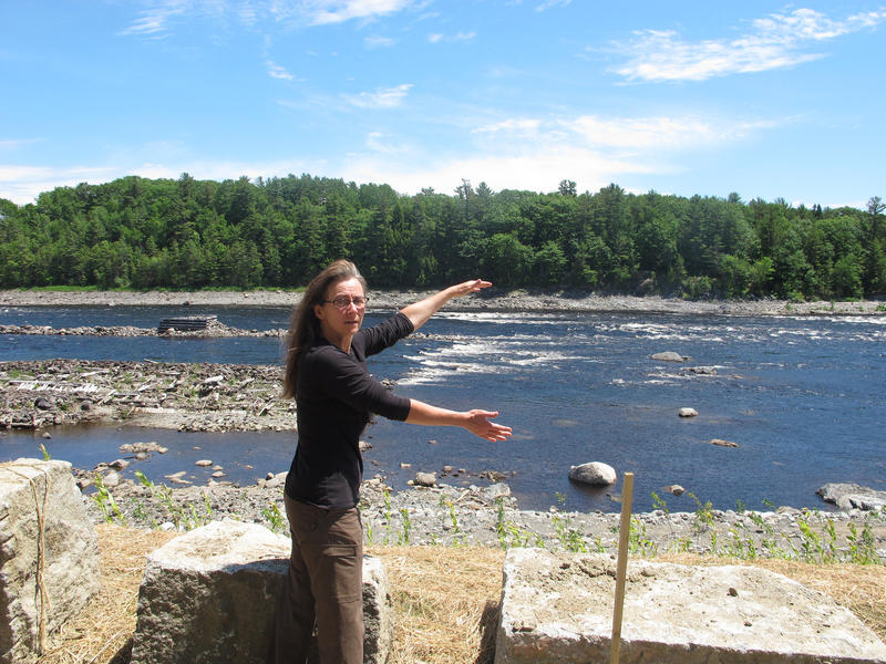 Laura Rose Day is executive director of the Penobscot River Restoration project, gestures toward the site of the now-dismantled Veazie Dam on the Penobscot River.