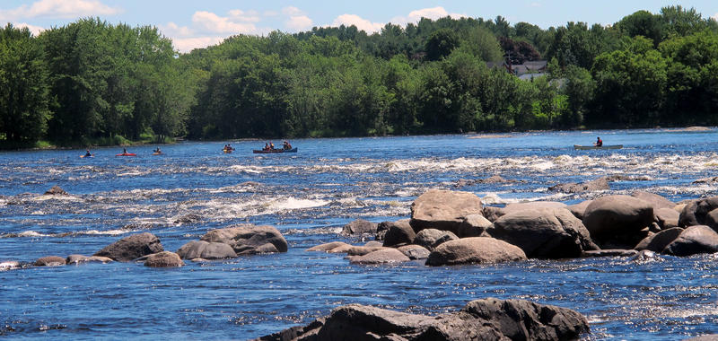 Canoeists and kayakers from across the nation paddle down the churning waters of the Penobscot River.