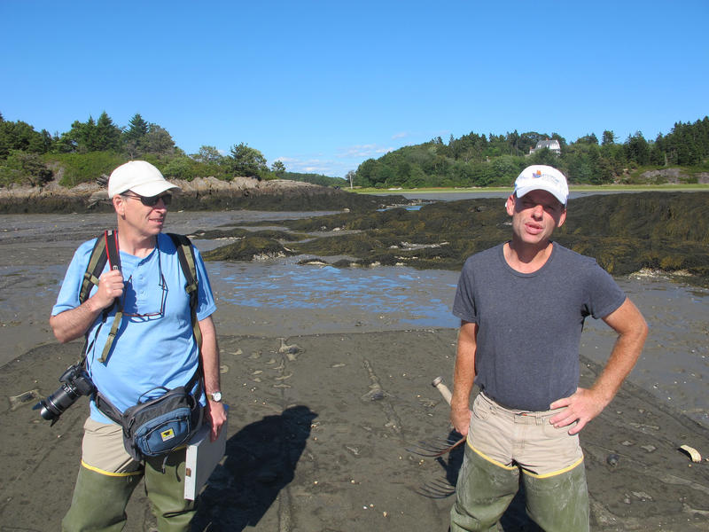 Clam farmer Chris Warner, right, at the Georgetown Heal Eddy project, with John Hagan of the Manomet Center for Conservation Sciences in Brunswick.