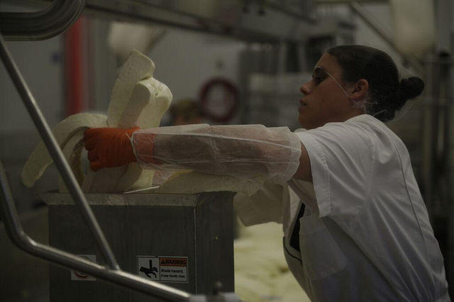 A worker in the New Gloucester creamery