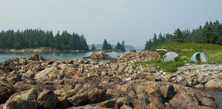 Campsites on one of the 200 or so islands comprising the Maine Island Trail system