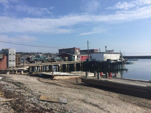 Another view of the commercial wharf at Cook's Lobster & Ale House on Bailey Island.