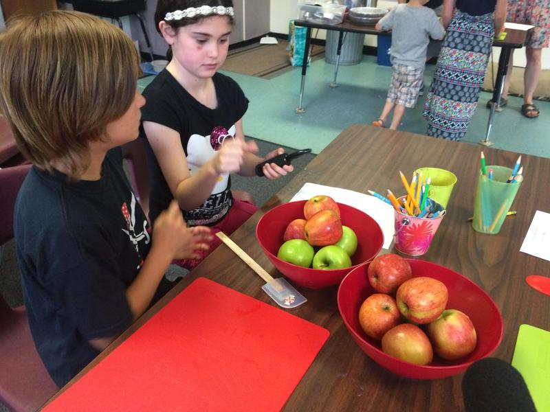 School choice could affect rural schools such as New Suncook Elementary School in Lovell, part of MSAD 72 in Oxford County. Here, New Suncook fifth-graders Makya Brown and Laura Anne Myers cut apples in July 2016.