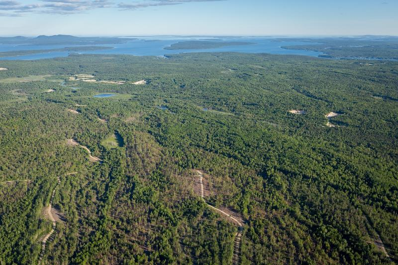 The Surry Forest property, seen from the air.
