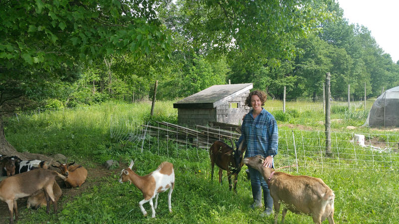 Heather Retberg with goats at Quill's End Farm in Penobscot.
