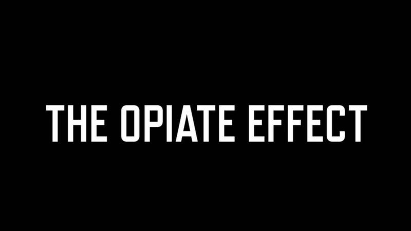 The Opioid Effect title still