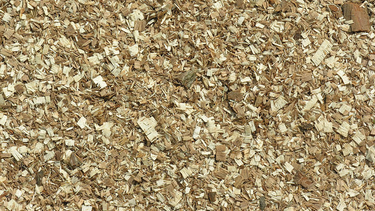 Wood scraps used in biomass energy.