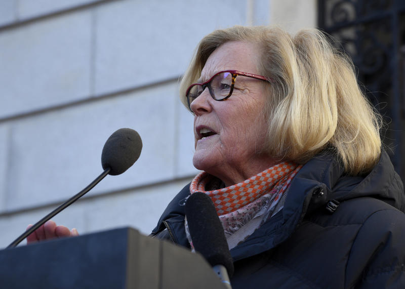 Chellie Pingree speaks in Portland at a rally against repealing the Affordable Care Act, January 15. 2017.
