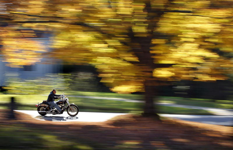 A motorcyclist cruises past a maple tree displaying its bright fall foliage in Oct. 2014, in Freeport.