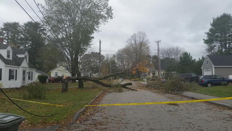 Power lines down on Reed Street in Westbrook on Monday.