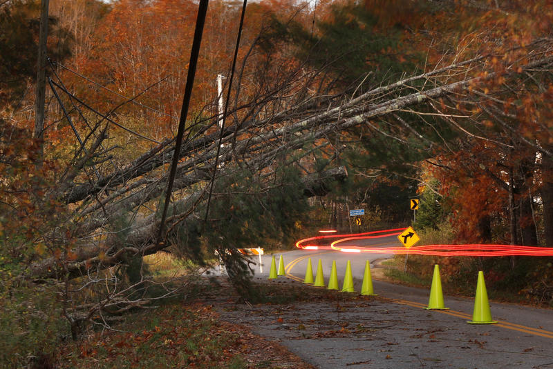 A car leaves a trail of light as it passes under power lines weighed down by toppled trees in Freeport on Tuesday.