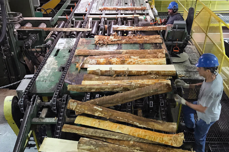 Sawed birch logs are sorted and inspected as they make their way through the cigar tip manufacturing process at Pride Manufacturing in Burnham.