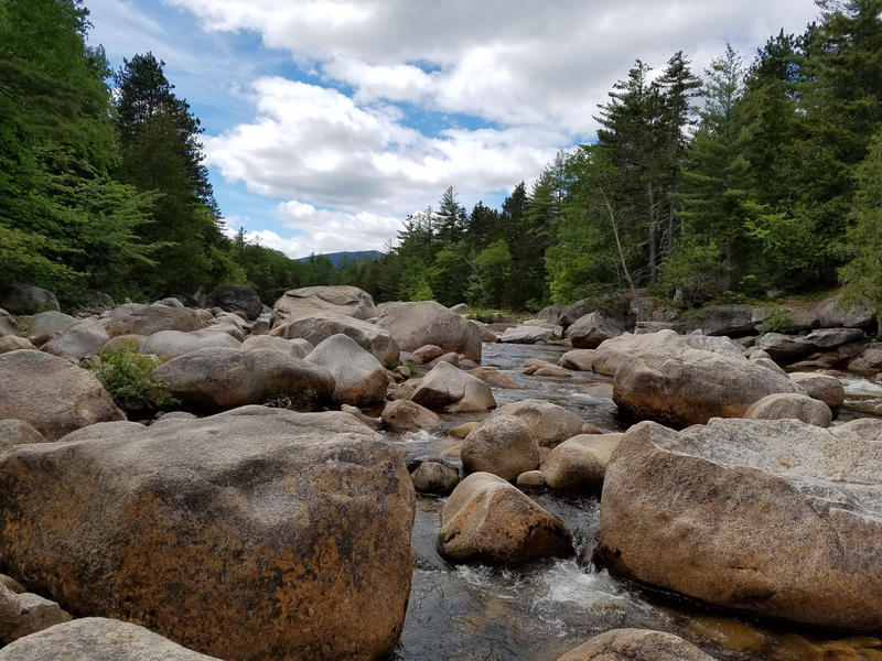 The Orrin Stream, in the Katahdin Woods and Waters National Monument, seen in May 2017.