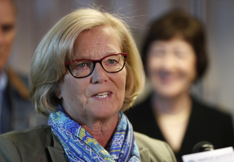Rep. Chellie Pingree, D-Maine, speaks at a news conference at Bath Iron Works in Bath, Maine, Friday, Sept. 29, 2017.