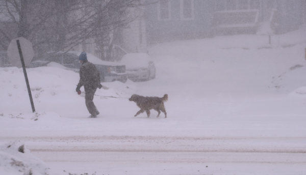 A man walks his dog in Brewer during the snowstorm on Christmas Day.