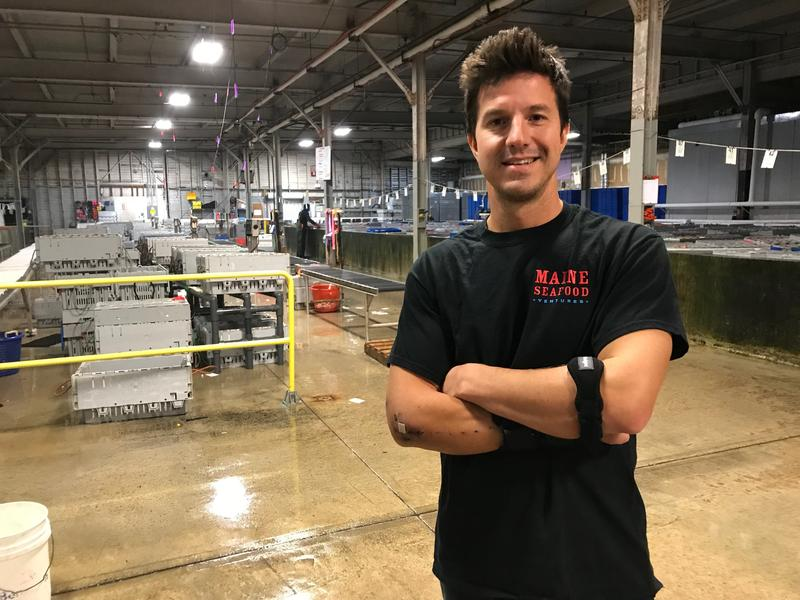 Brendan Ready manages Ready Seafood Co. in Portland, where thousands of pounds of Maine lobster are shipped to overseas markets.
