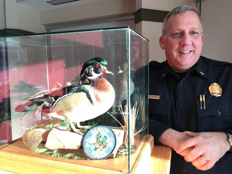 Bangor police Lt. Tim Cotton with the department's Duck of Justice.