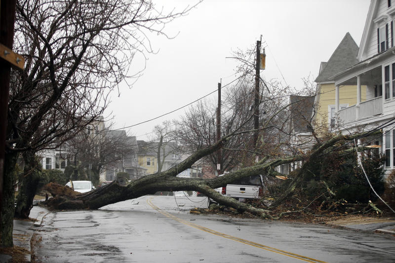 In this March 2, 2018 file photo, an uprooted tree blocks a residential street after taking down a power line in Swampscott, Mass.