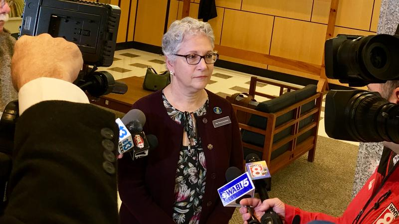 Rep. Patricia Hymanson fields questions from reporters following a unanimous vote by the Legislature's Government Oversight Committee to investigate child abuse procedures by Child Protective Services.