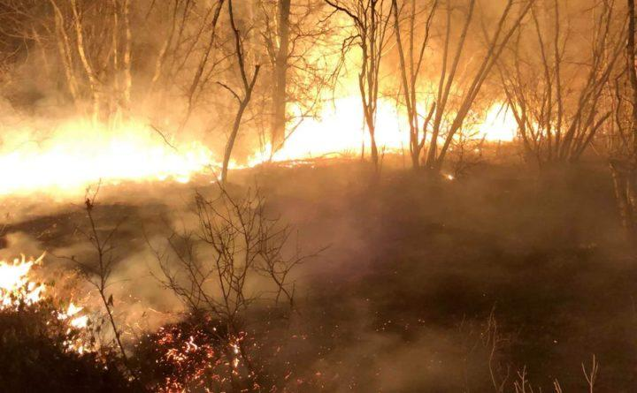 Local firefighters and the Maine Forest Service battled overnight a large brush fire that had burned 60 acres in three York County towns.