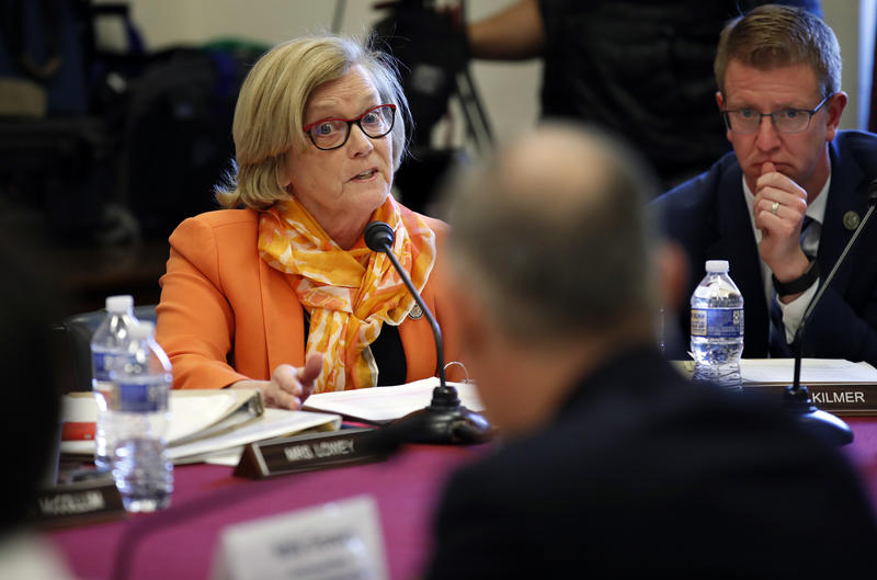 The measure sponsored by Maine Congressperson Chellie Pingree that is aimed at keeping siblings together while in federal custody