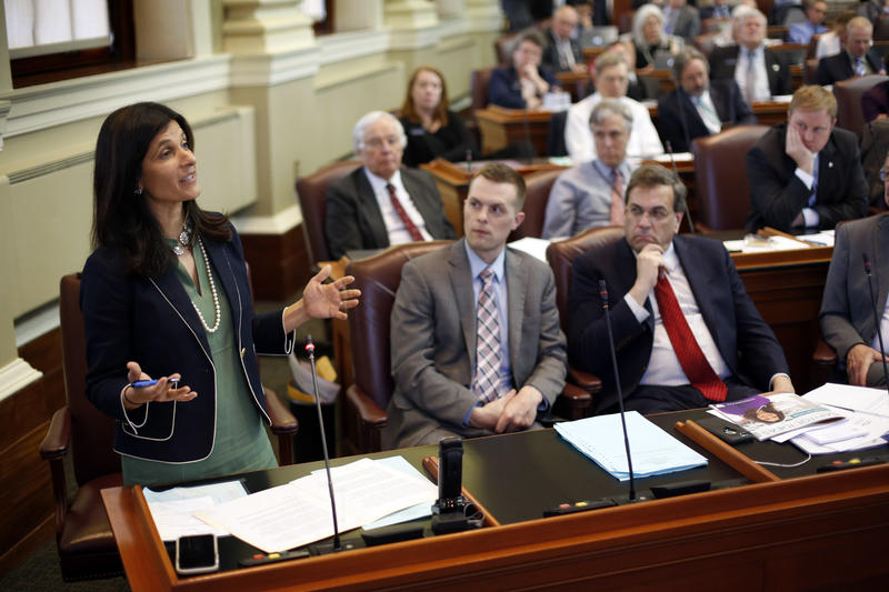 Speaker of the House Sara Gideon-D Freeport, addresses legislators from the House floor, Wednesday, May 2, 2018, at the State House in Augusta, Maine.