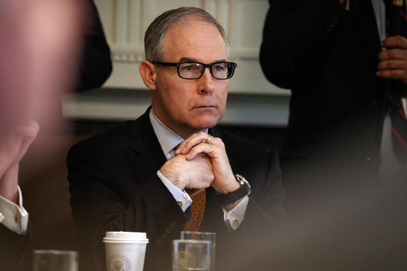 Environmental Protection Agency administrator Scott Pruitt listens as President Donald Trump speaks during a cabinet meeting at the White House, Thursday, June 21, 2018, in Washington.