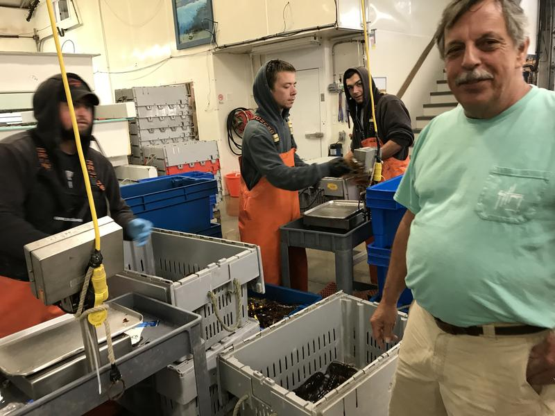 Michael Marceau, co-owner of The Lobster Co., at the Arundel packing and shipping plant