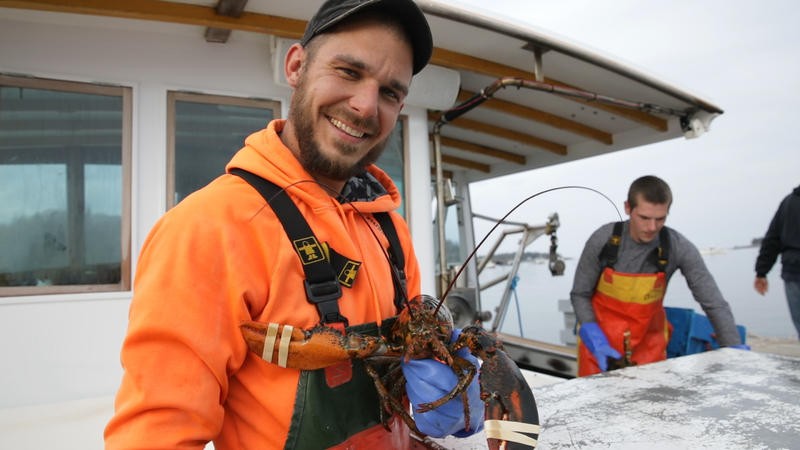 Lobster boat crew members Noah Monk, left, and Jesse Eustis, in background, bring John Tripp's lobster catch to the Tenants Harbor Fisherman's Co-op.