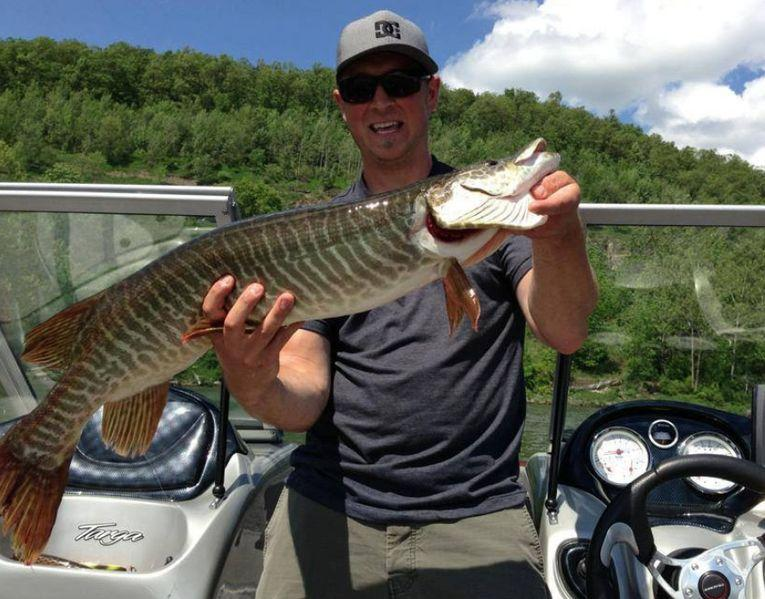 A muskellunge caught in Pennsylvania in June of 2013.
