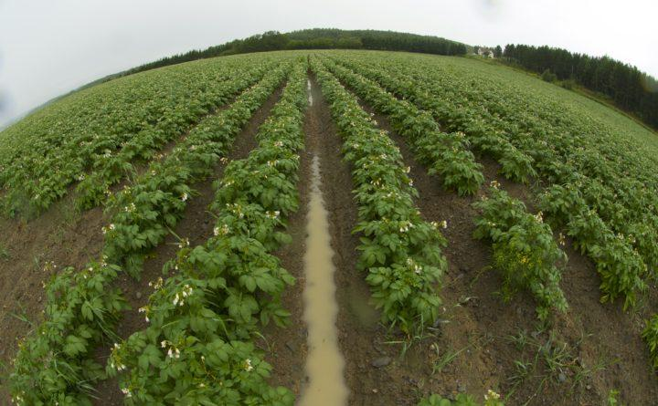 Dramatic variations in weather thanks to climate change are creating challenges for Maine farmers. A University of Maine team is hoping to come up with a plan to help farmers adapt to climate change.