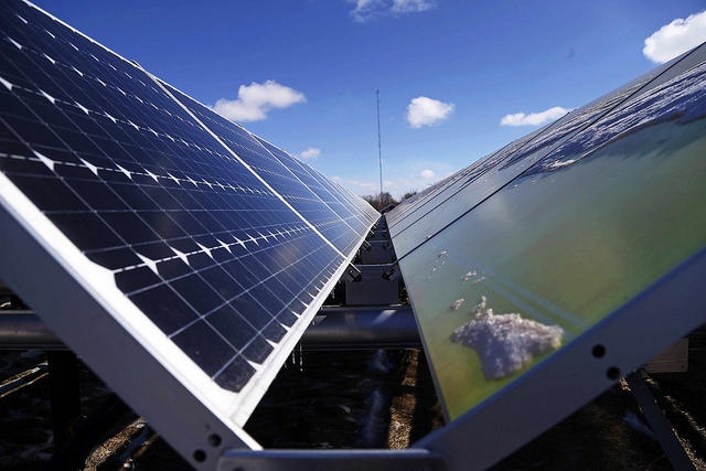 USA finds solar panel imports harm domestic makers