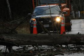 Downed trees blocked - or at least impeded traffic - on some roads in the North Country.
