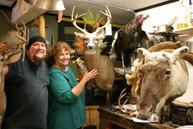 Rick Bewersdorf and Amy Morrill in their Wilton taxidermy shop.