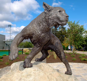 Wildcat statue on the University of New Hampshire campus in Durham.