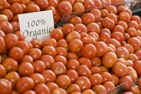 """Some studies show organic foods to be no healthier and only marginally safer with regard to individual exposure to pesticides than non-organic foods. Nonetheless, choosing organic is a wise """"better safe than sorry"""" strategy which also reduces pollution and conserves water and soil quality."""