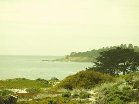 The Carmel, CA coastline.