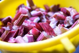 Rhubarb, sweet rhubarb. Actually rhubarb is sour, but why get technical over something so tasty?