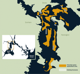A study conducted by UNH predicted that oyster farming could take place in as many as 400 acres (shown in yellow). However, prospective farmers have found that many of those acres are not suitable because of presence of eel grass, too much mud, or too much variety in depths, among other reasons.