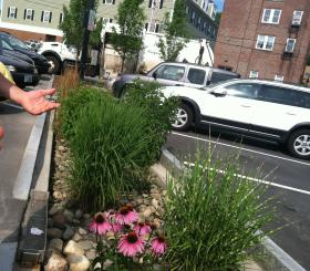 """Durham's town engineer Dave Cedarholm shows off one of the towns several rain gardens. The town hopes innovative """"green infrastructure"""" like this will help them avoid expensive waste water treatment plant upgrades."""