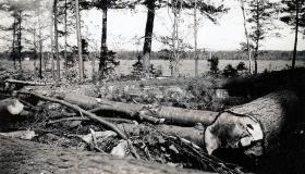 Hurricane damage in Wolfeboro