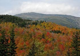 Foliage attracts large numbers of tourists to Mount Washington this time of year