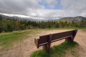 The benches aren't empty during high season in the White Mountain National Forest