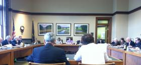 Representatives Neal Kurk and Cindy Rosenwald testify before lawmakers.