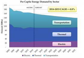 Per capita demand is expected to fall, driven primarily by federal efficiency standards for cars. Even with falling demand, rising prices mean that per capita expenditures are still expected to rise.