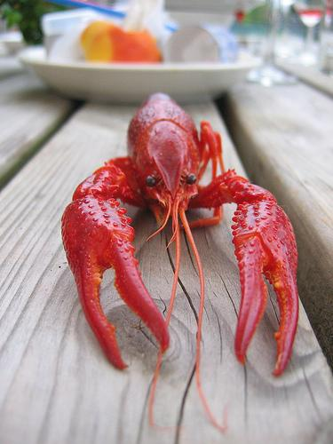 Defense spending comes to states in many forms…including lobster.
