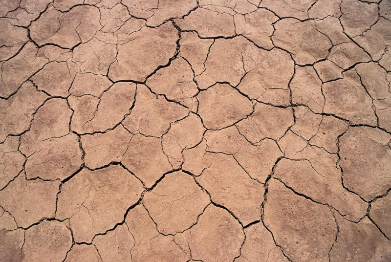 One out of three counties across the contiguous U.S., says a recent study commissioned by the Natural Resources Defense Council, should brace for water shortages by mid-century as a result of human induced climate change.