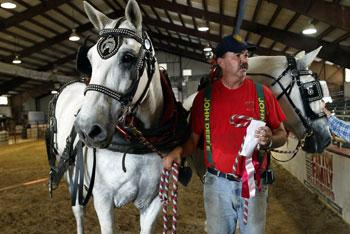 Durwin Clark stands with his magnificent draft horses.