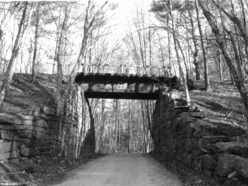 Jackson Road Railroad Trestle in Mason